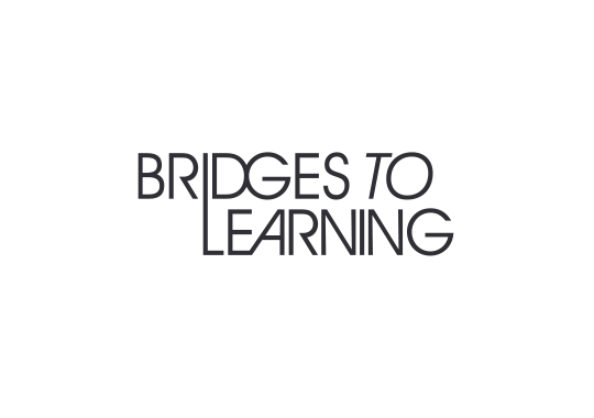 Bridges to Learning